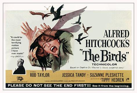 Birds film poster
