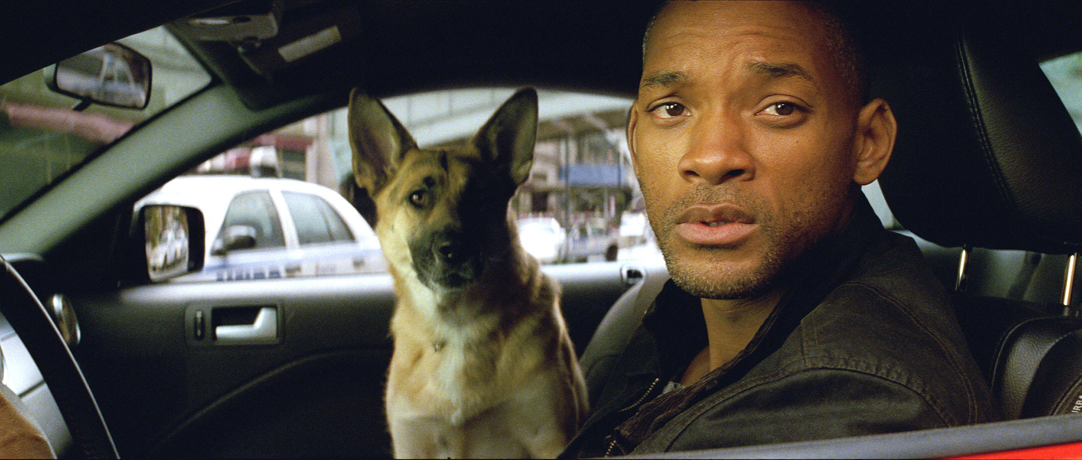 I Am Legend Movie Movie Musing: The Sadd...